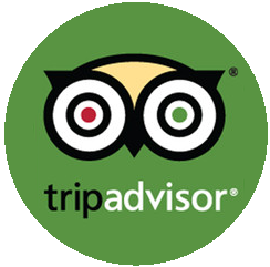 Collection of Tripadvisor Logo Vector PNG.   PlusPNG